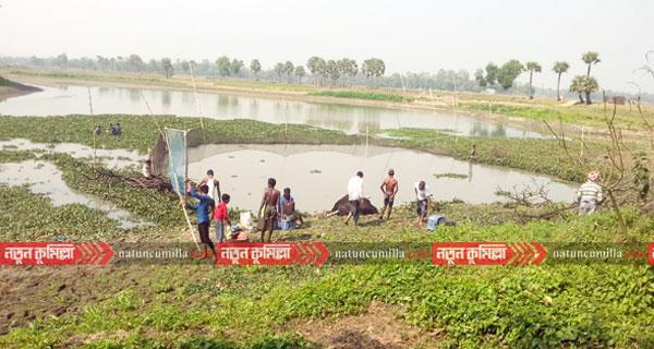 কুমিল্লায় ডাকাতিয়া নদীতে বিষ ঢেলে অবাধে মাছ শিকার