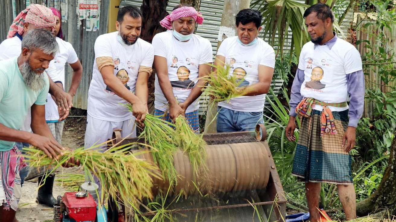 মুরাদনগরে কৃষকের ধান কেটে মাড়াই করে দিলো কৃষকলীগ